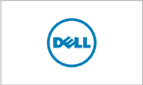 Dell Synthesis